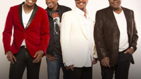 Jacksons : le plein d'actu