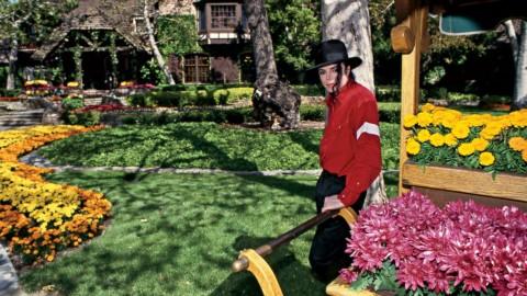 Avec des fleurs, je soutiens Michael et le Télévie !